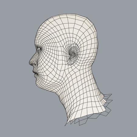 Leiter Der Person Von Einem 3D-Gitter. Menschlicher Kopf Drahtmodell ...