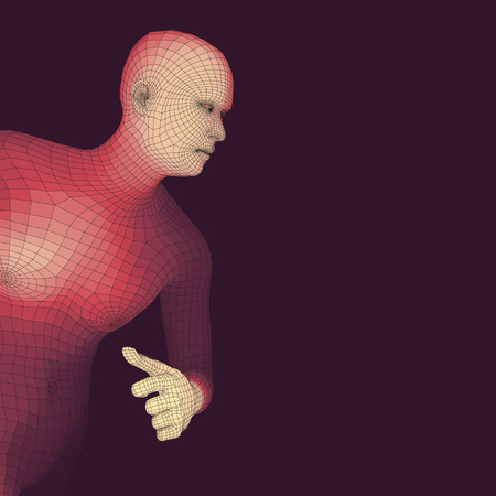 3d model: 3D Model of Man. Polygonal Design. Geometric Design. Business, Science and Technology Vector Illustration. 3d Polygonal Covering Skin. Human Polygon Body. Human Body Wire Model. Illustration