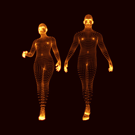 Man and Woman. 3D Model of Man. Human Body Model. Body Scanning. View of Human Body. Vector Graphics Composed of Particles.
