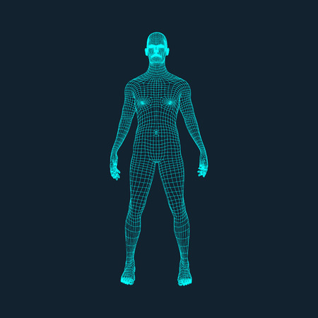3D Model of Man. Polygonal Design. Geometric Design. Business, Science and Technology Vector Illustration. 3d Polygonal Covering Skin. Human Polygon Body. Human Body Wire Model. Vettoriali
