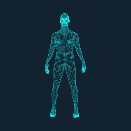 Modelo 3D del Hombre. Diseño poligonal. Diseño geométrico. Negocios, Ciencia y Tecnología de la ilustración del vector. Piel 3D poligonal cubriendo. Cuerpo Polígono humano. Modelo de alambre del cuerpo humano. Ilustración de vector