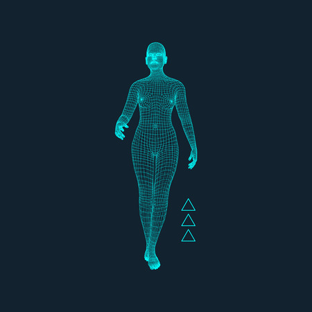 3D Model of Man. Polygonal Design. Geometric Design. Business, Science and Technology Vector Illustration. 3d Polygonal Covering Skin. Human Polygon Body. Human Body Wire Model.  イラスト・ベクター素材