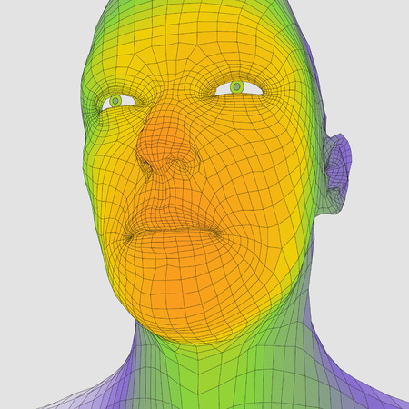 physiognomy: Head of the Person from a 3d Grid. Human Head Wire Model. Human Polygon Head. Face Scanning. View of Human Head. 3D Geometric Face Design. 3d Polygonal Covering Skin. Geometry Polygon Man Portrait.