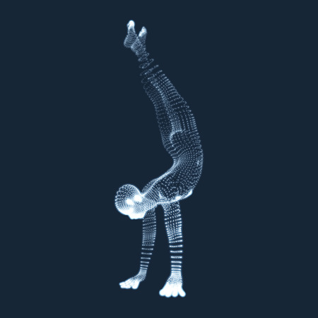 3d model: Gymnast. Man. 3D Model of Man. Human Body Model. View of Human Body. Gymnastics Activities for Icon Health and Fitness Community. Illustration