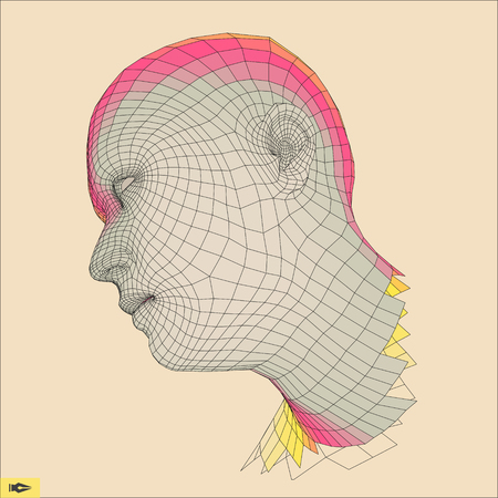 physiognomy: Head of the Person from a 3d Grid. Human Head Wire Model. Geometry Polygon Man Portrait. Illustration
