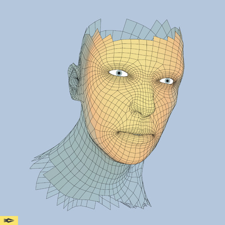 countenance: Head of the Person from a 3d Grid. Human Head Wire Model. Geometry Polygon Man Portrait. Illustration