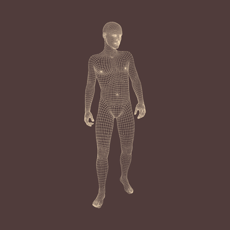 3D Model of Man. Geometric Design. Vector Illustration.