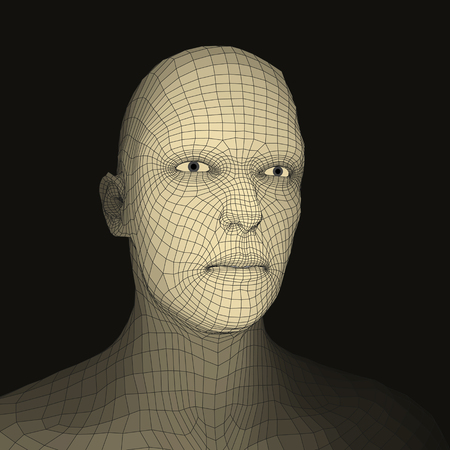 physiognomy: Head of the Person from a 3d Grid. Human Head Wire Model. Face Scanning. View of Human Head. 3D Geometric Face Design. Polygonal Covering Skin. Vector Illustration.