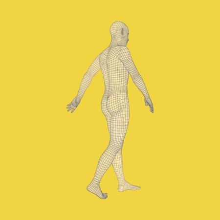 stride: Walking Man. 3D Human Body Model. Geometric Design.