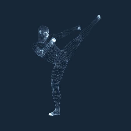 man: Fighting Man. 3D Model of Man. Human Body Model. Body Scanning. View of Human Body. Vector Graphics Composed of Particles.