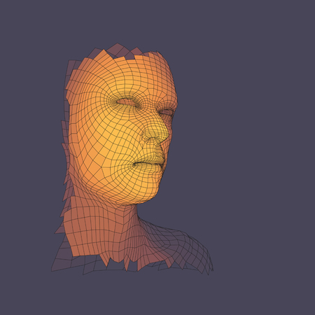 countenance: Head of the Person from a 3d Grid. Human Head Wire Model. Face Scanning. View of Human Head. 3D Geometric Face Design. Polygonal Covering Skin. Vector Illustration.