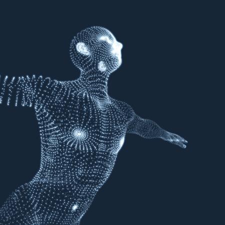 cuerpo hombre: Modelo 3D del Hombre. Cuerpo humano. Elemento de diseño. Ilustración vectorial.