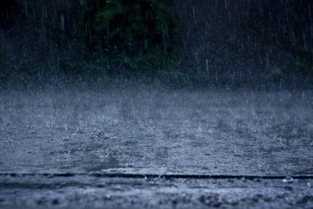폭우 스톡 콘텐츠
