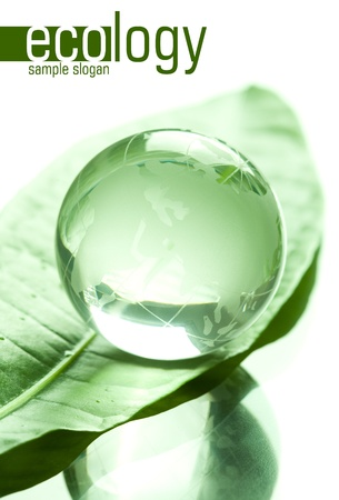 hemisphere: Globe made of glass on green leaf  Space for text isolated on solid white color