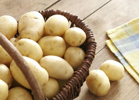 potato field: Fresh harvested potatoes in a basket  Table cloth next to it  All on old wooden table