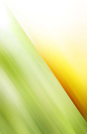 Green and orange background  Stock Photo - 13621290