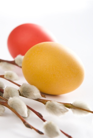 Two dyed easter eggs and catkins on white background