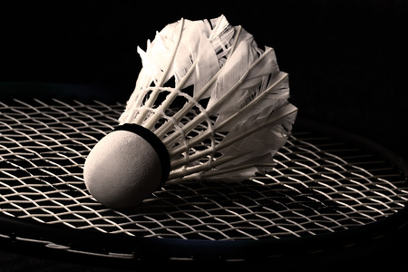 white shuttlecock from goose feathers on badminton racket