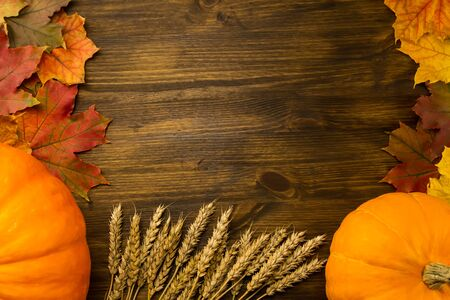 colorful leaves: Yellow ripe pumpkin, maple leaves, red apples, wheat on wooden background