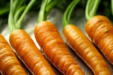 zanahoria: Manojo de zanahorias frescas con hojas verdes en una bandeja de metal con gotas de agua. Comida vegetariana saludable Foto de archivo