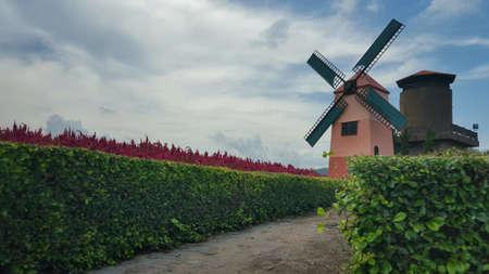 shrubbery: Windmill at a vineyard in Chonburi, Thailand.