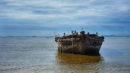 wooden boat: Birds perched on wooden boat in Chonburi, Thailand.