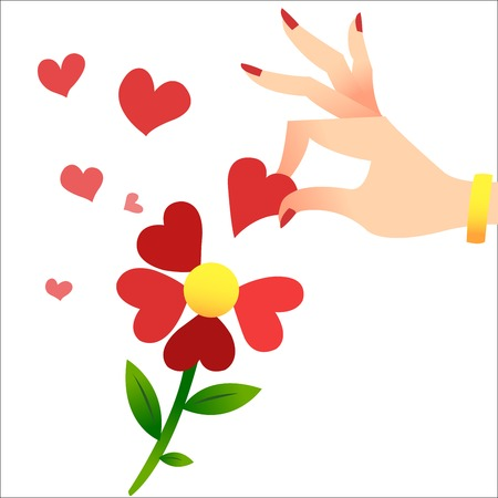 and guessing: Guessing about love on the petals. A womans hand lifts the heart petals