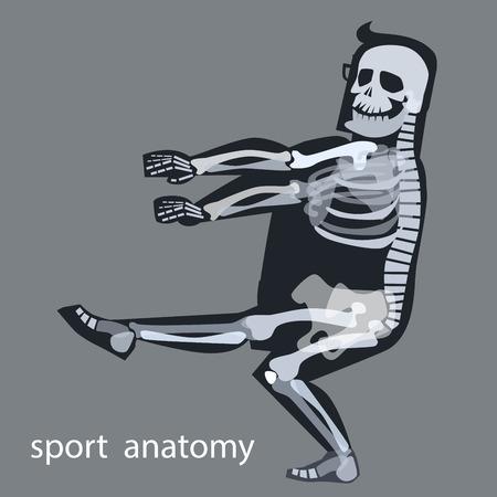 x xray: Skeleton anatomy sport male gymnastics. The human skeleton during sports