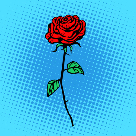 Flower red rose stem with thorns a symbol of love and romance