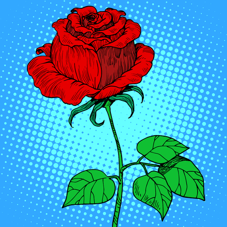 Rose red flower pop art retro style