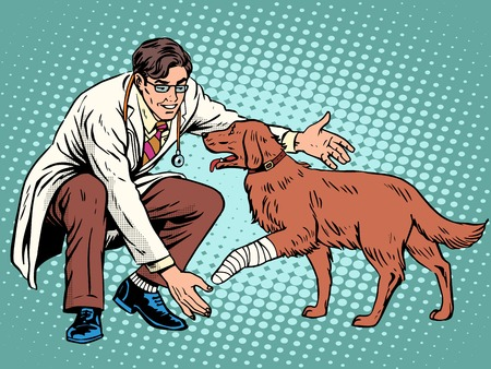 working animal: vet dog wounded paw pop art retro style. Doctor of veterinarian and treatment in the veterinary clinic. treatment of domestic and farm animals. Pets