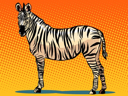 African Zebra animal pop art retro style. Realistic vector Zebra. Illustration of Zebra. Zebra with black and white stripes. Zebra in profile