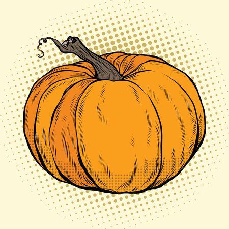 Ripe pumpkin, Thanksgiving or Halloween. pop art retro vector illustration. Autumn harvest Illustration