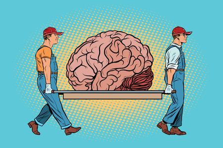 madness: Brain bear repair