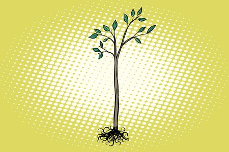 tree seedling with green leaves Иллюстрация