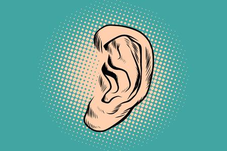 Male human ear