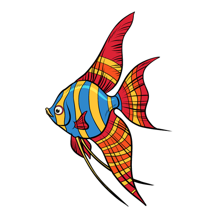 Isolated Freshwater angelfish aquarium fish illustration. 向量圖像