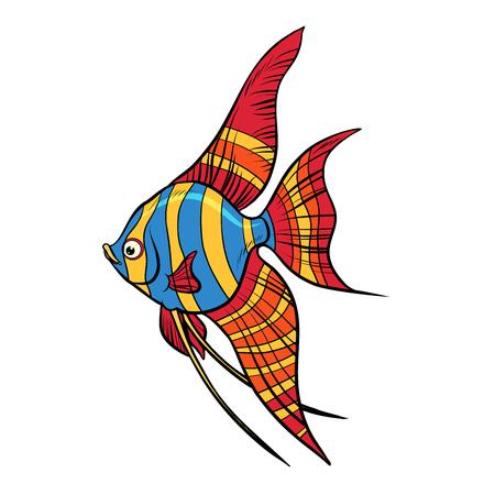 Isolated Freshwater angelfish aquarium fish illustration. Illustration
