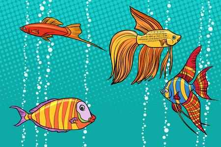 Impostare la raccolta di pesci d'acquario Archivio Fotografico - 93841455