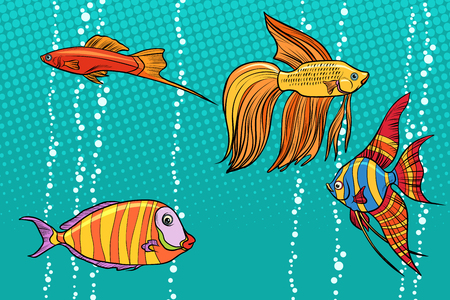 Set collection of aquarium fish. Pop art retro vector illustration Stok Fotoğraf