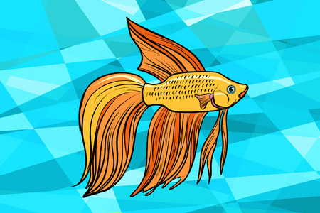 Cockerel aquarium fish. Pop art retro vector illustration.