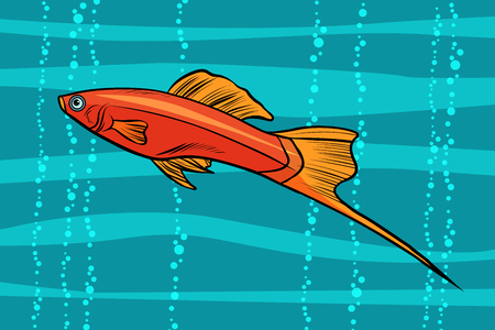Sword tail aquarium fish. Pop art retro vector illustration. Illustration
