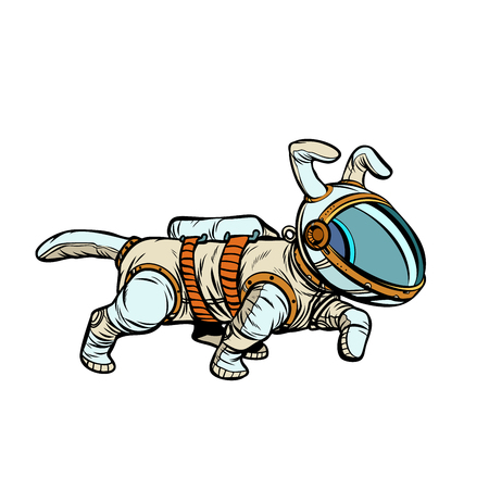 pet dog astronaut. Pop art retro vector illustration kitsch vintage drawing Stockfoto - 102980211