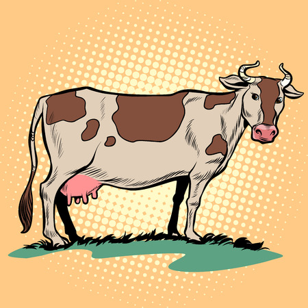 dairy milk cow with udder. Farm animal. Pop art retro vector illustration kitsch vintage