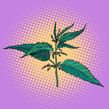 nettle, green burning plant. Pop art retro vector illustration vintage kitsch