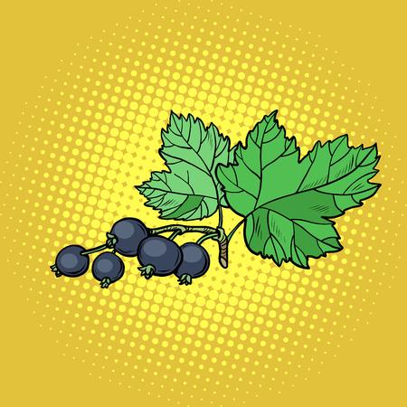 Zweig der schwarzen Johannisbeere. Pop-Art Retro-Vektor-Illustration Vintage-Kitsch Vektorgrafik