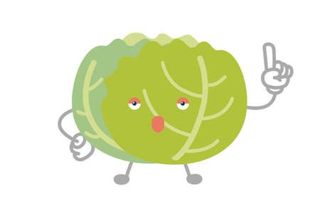 Vector illustration of simple and cute cabbage character to point