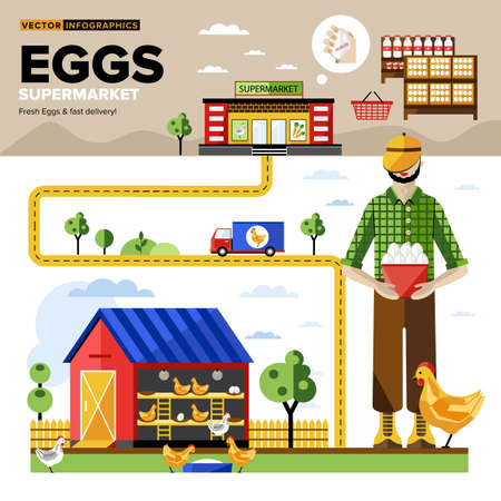 farm fresh: Eggs of own production with fast delivery to the supermarket. Vector Infographics. Illustration