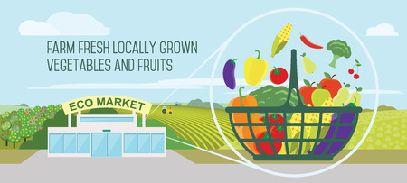 food market: Farmers market concept. Vector illustration Store with a basket of organic vegetables and fruits.