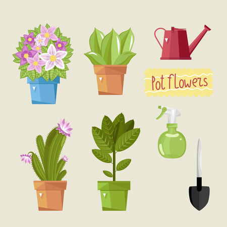 water plants: Set of single home potted plants. Domestic flowers. Vector illustration.